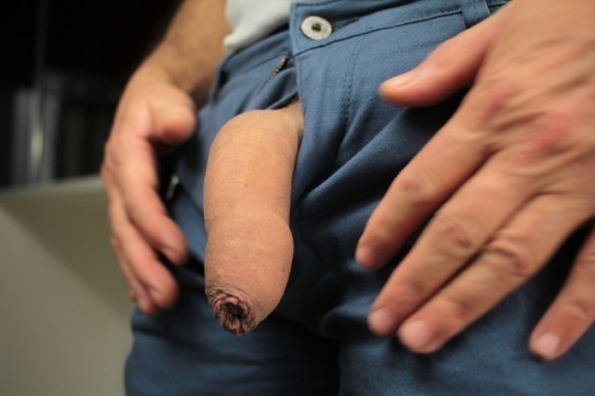 Flaccid cock with foreskin